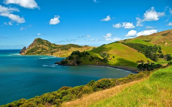 Auckland - Bay of Islands